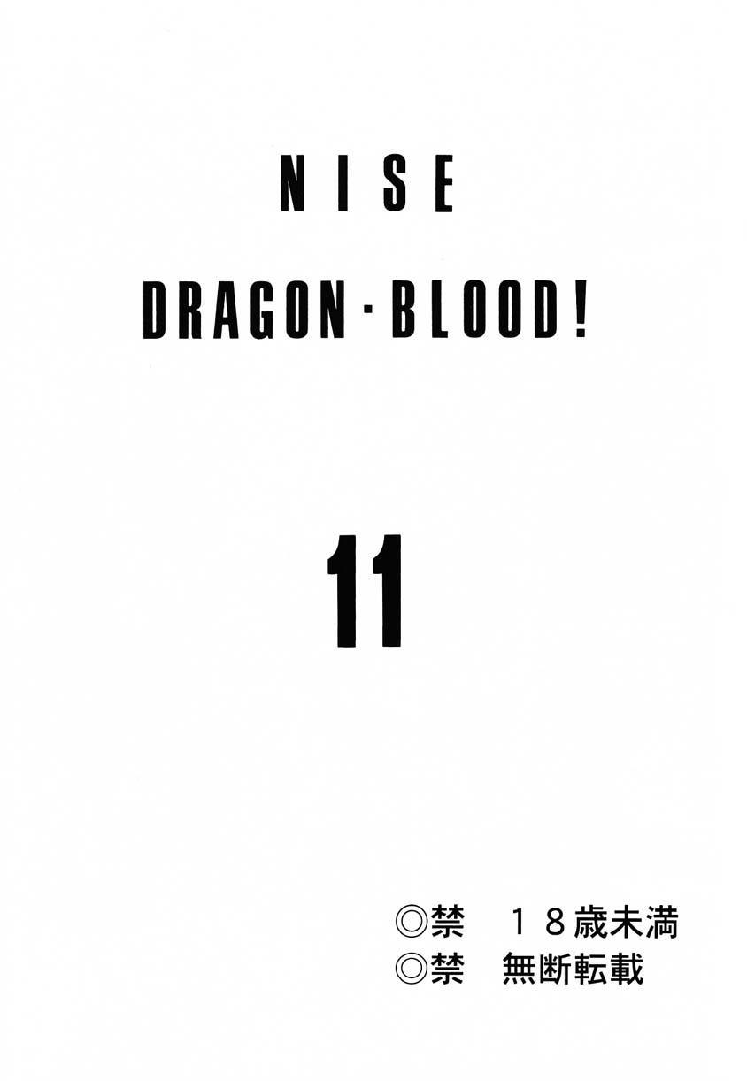 Nise Dragon Blood 11 1