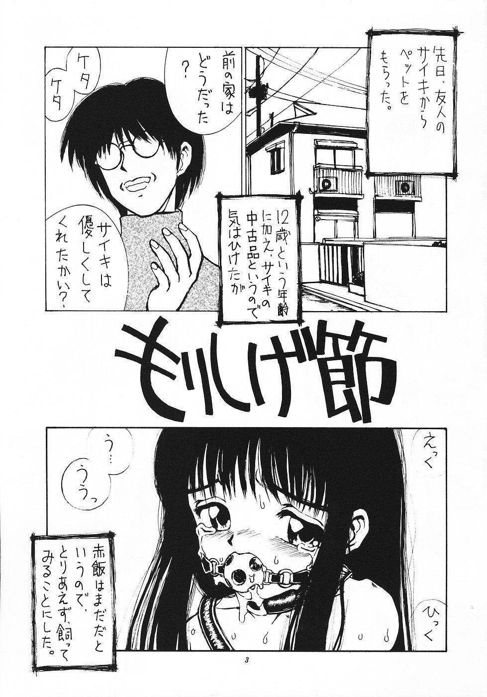 Shikisaiengi 3 1