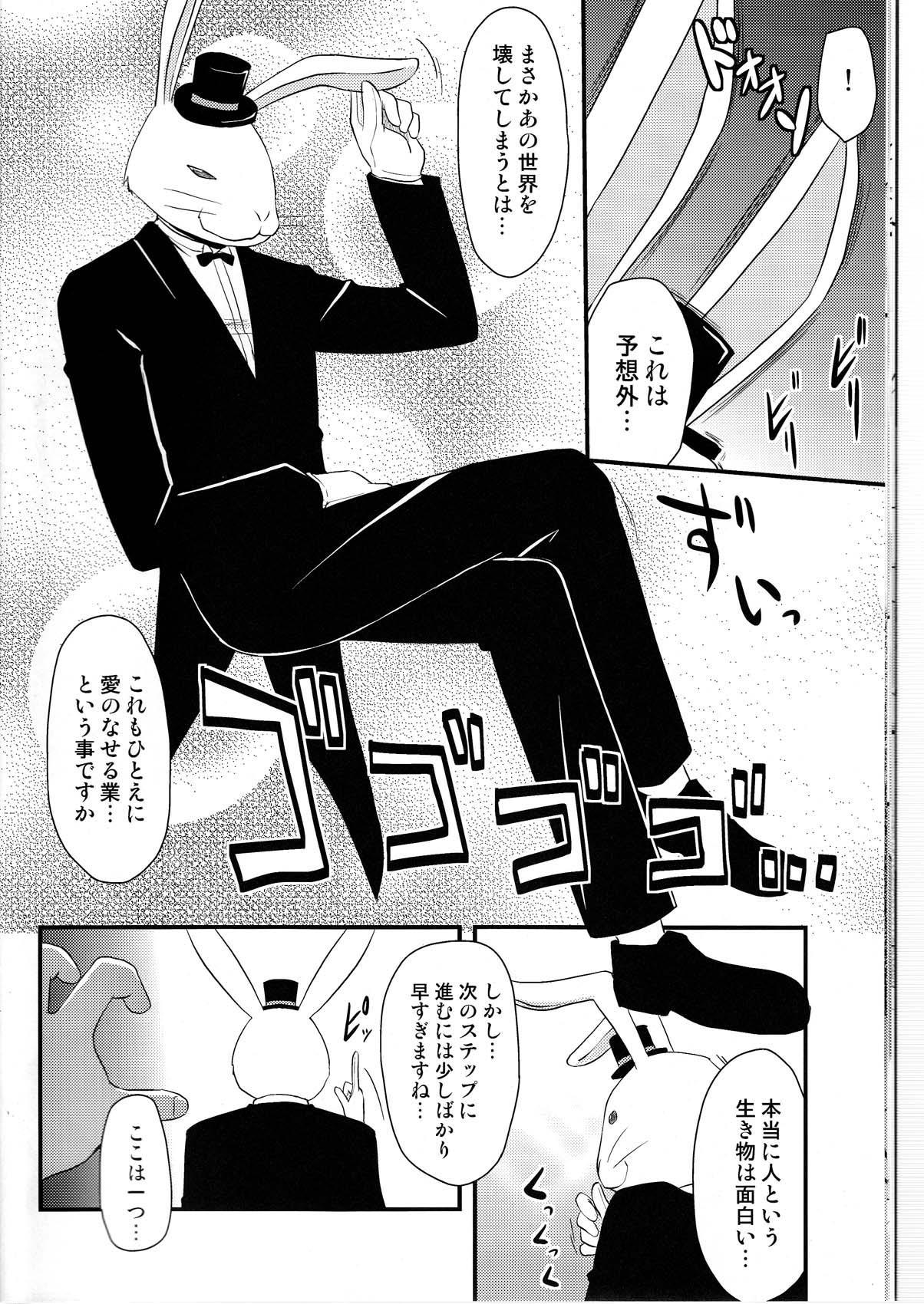 Souseiseki Hokan Keikaku 13
