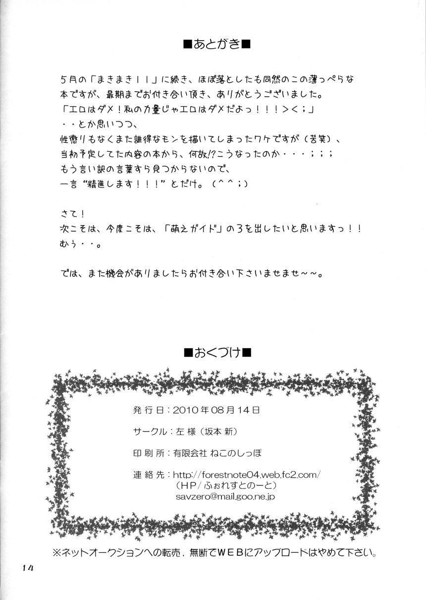 Aoiko ni Moe Moe Suru Hon 12