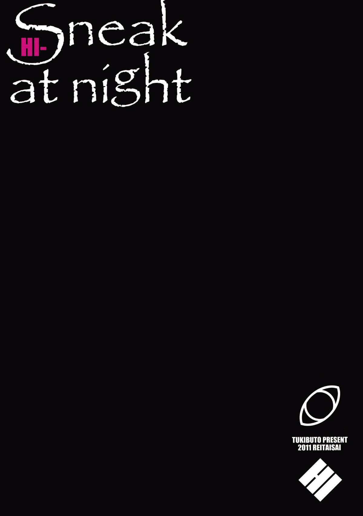 HI-Sneak at night 17