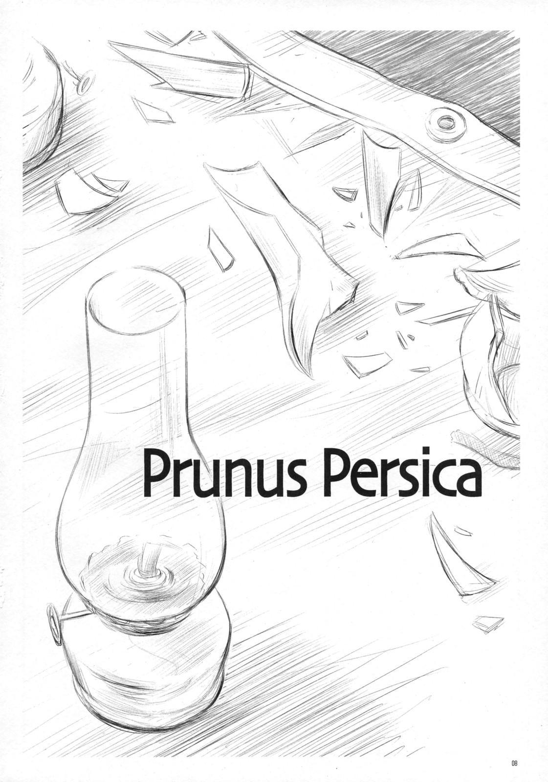 Prunus Persica 6