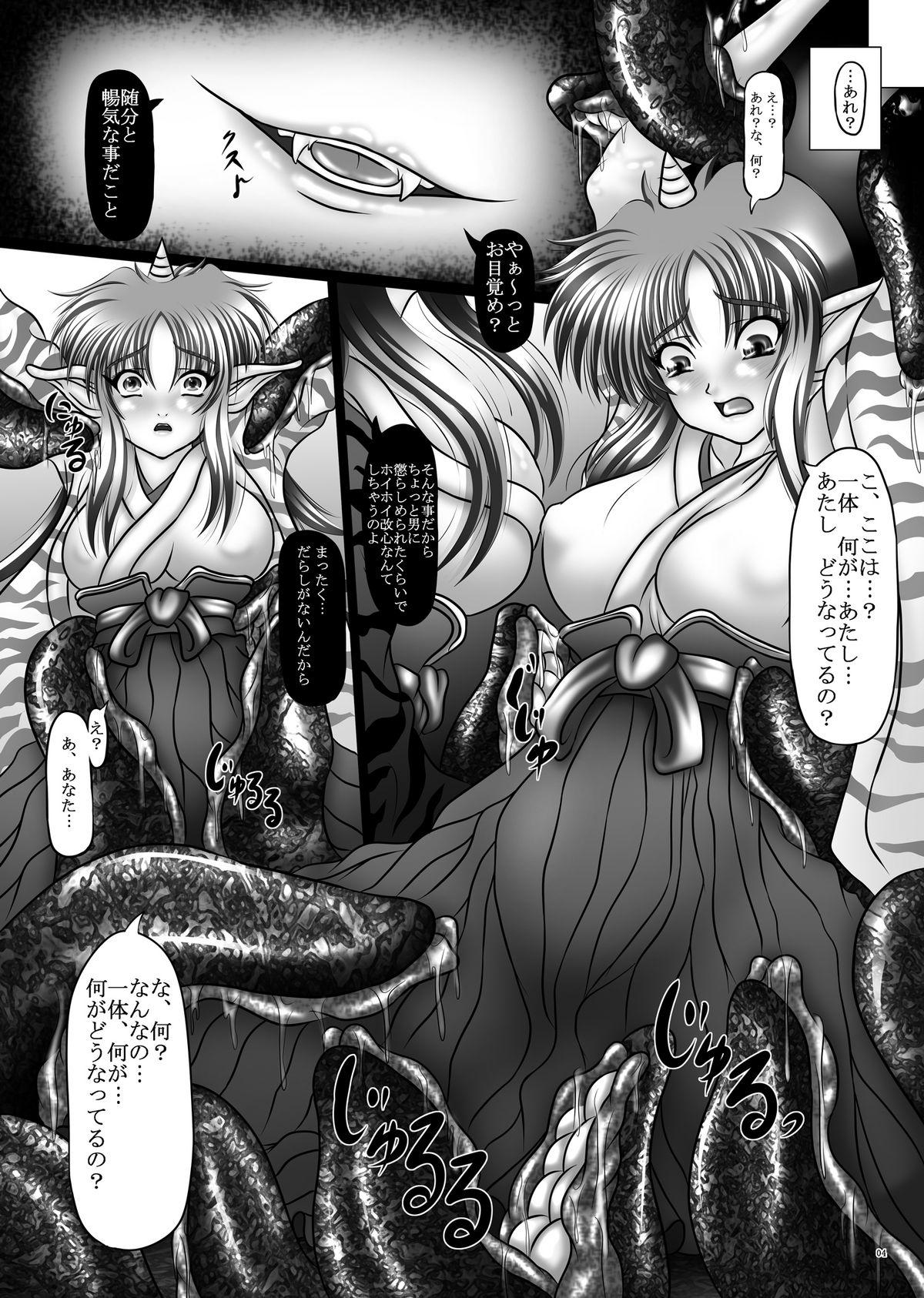 Dashoku Densetsu - Nihiki no Yashahime | The Two Yaksha Princesses 3
