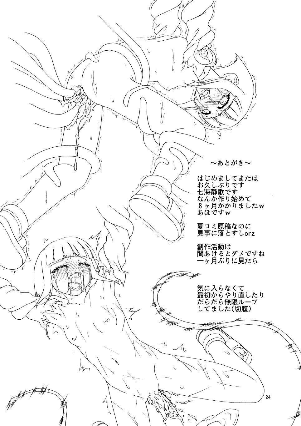 Manatsu no Akatonbo   Midsummer Red Dragonfly 22