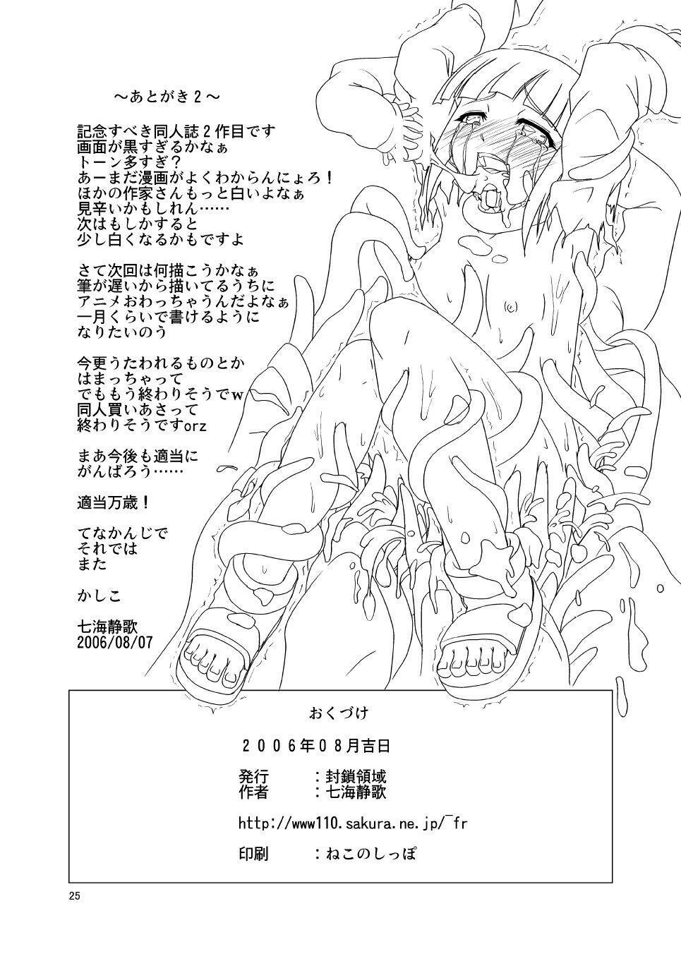 Manatsu no Akatonbo   Midsummer Red Dragonfly 23