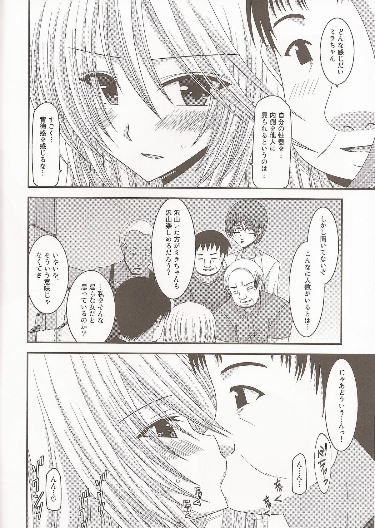 Seirei Yuugi 2