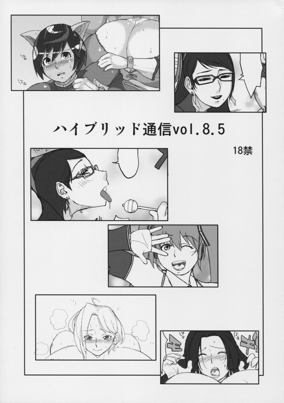Hybrid Tsuushin Vol.8.5 0