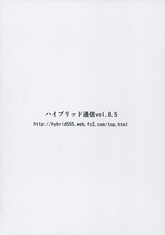 Hybrid Tsuushin Vol.8.5 22