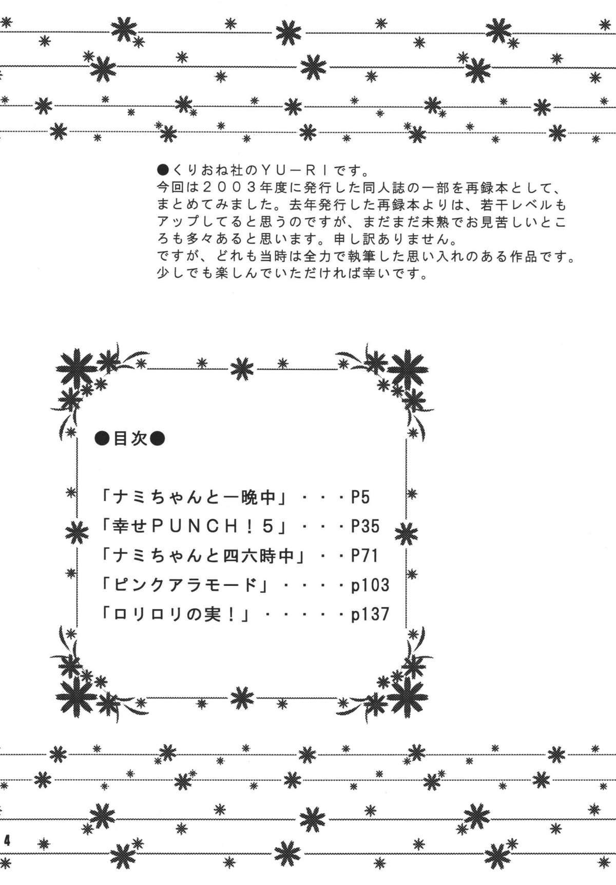 Kaizoku Musume. DX 2