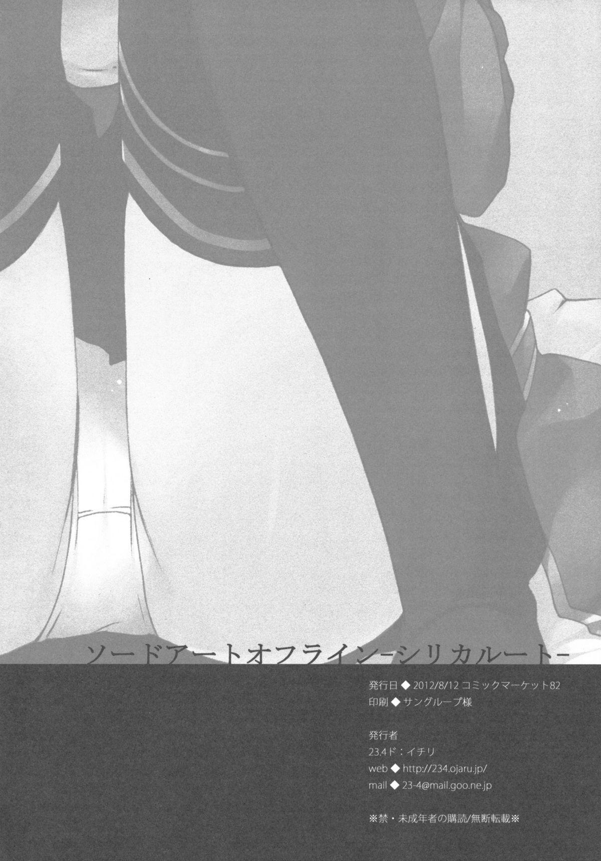 Sword Art Offline 16