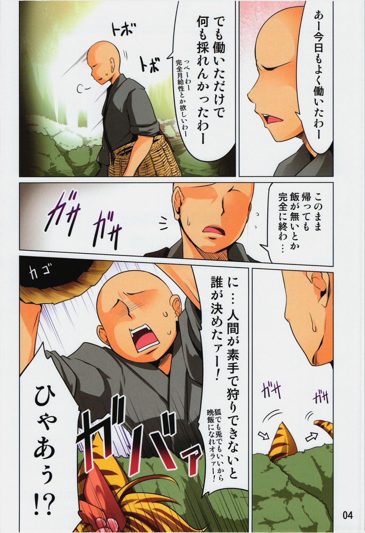 Toramaru Shou no Hatsujouki 3