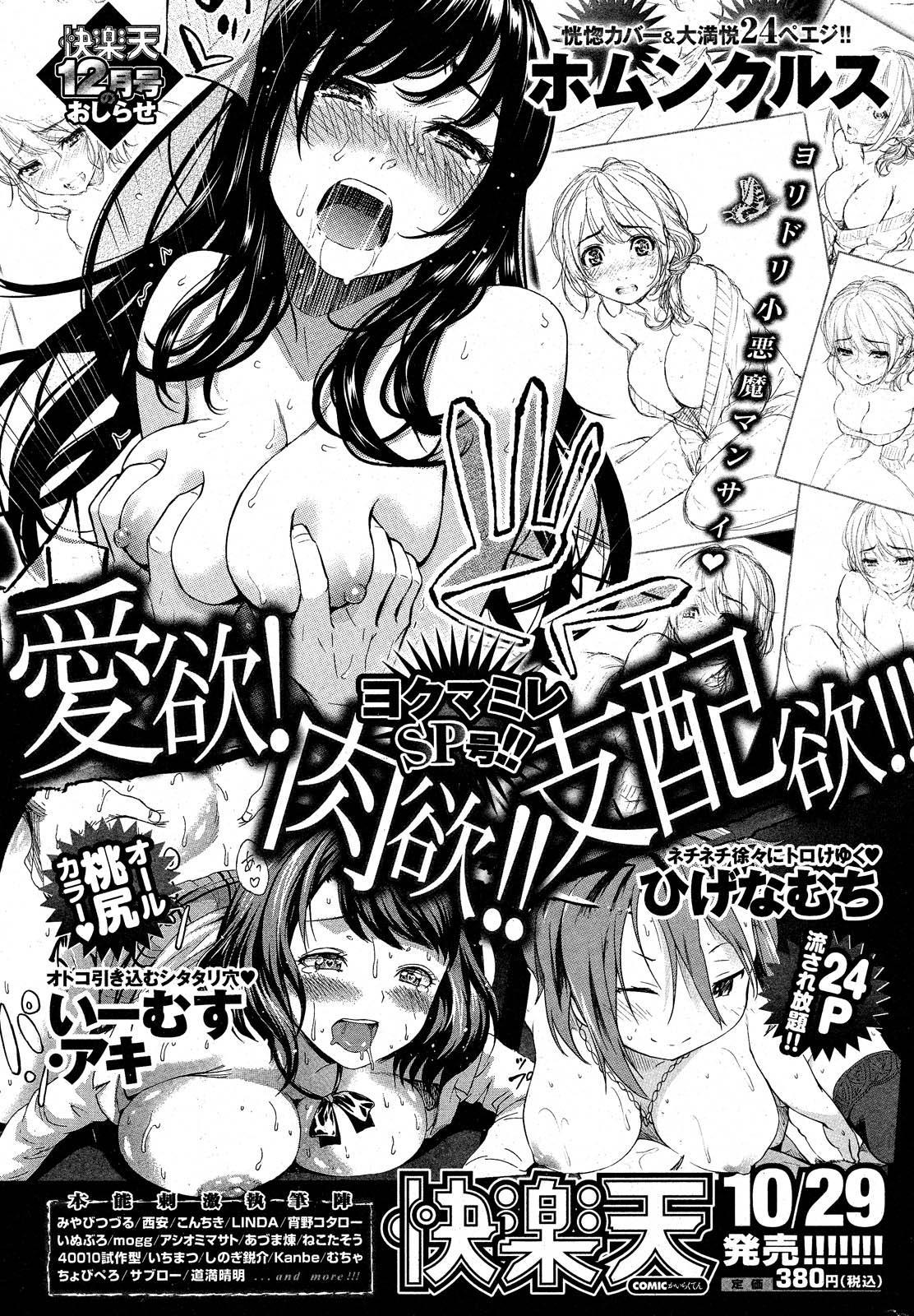 COMIC Shitsurakuten 2012-11 300