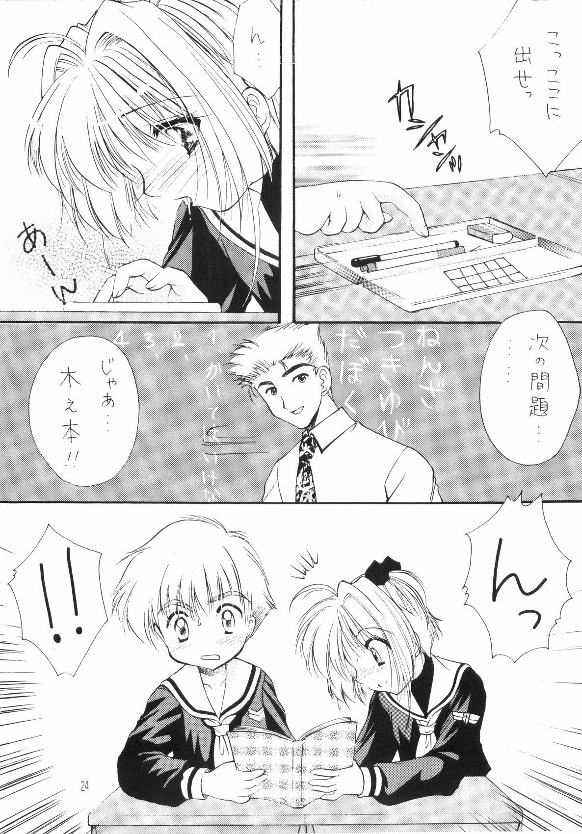 Sakura Enikki 23
