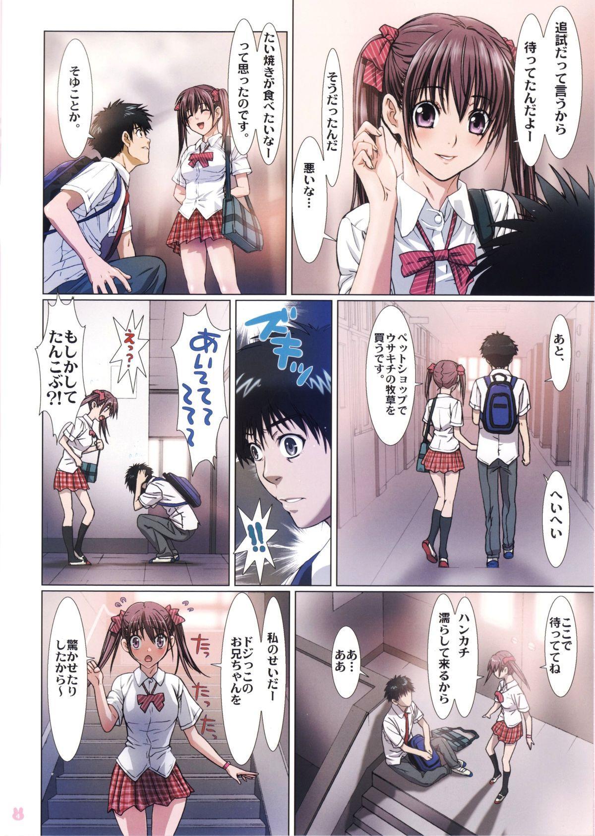 Imouto wa Boku no Koibito 3